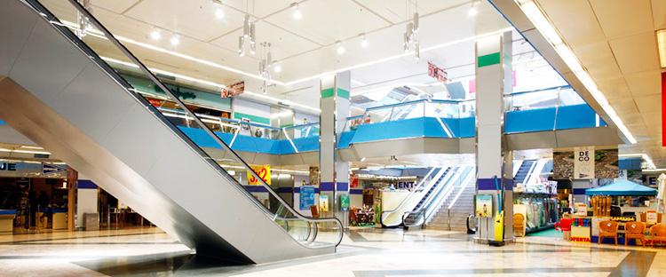 Tienda de animales oviedo best jarad perilla blanca for Centro comercial aki piscinas precio